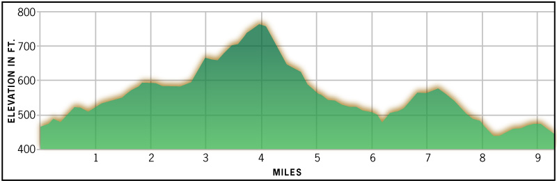 Race Elevation - Boilermaker.jpg